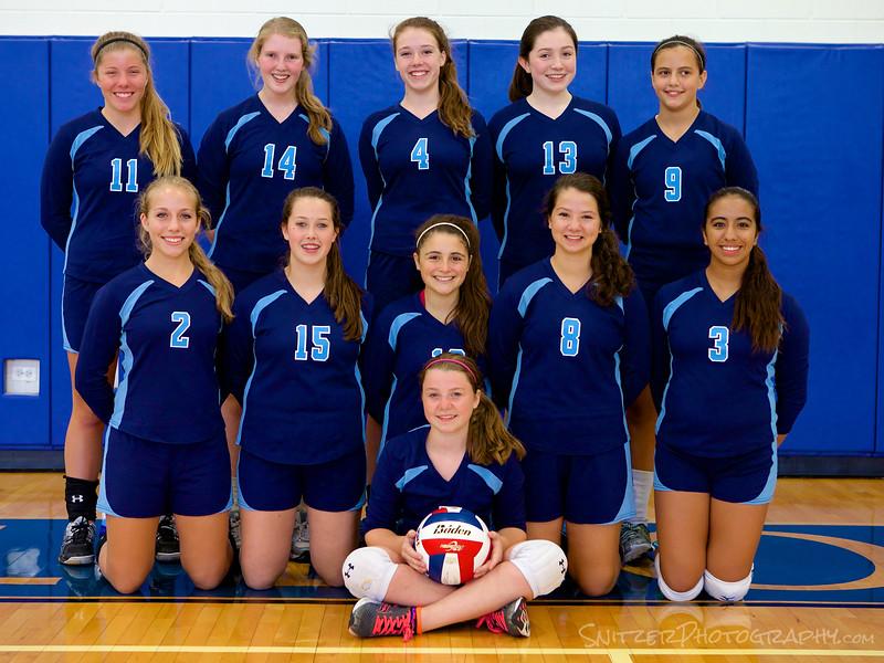 Willows academy  HS Volleyball 9-2014 1.jpg
