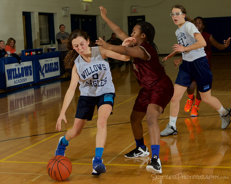 Willows middle school hoop Feb 2015 42.jpg