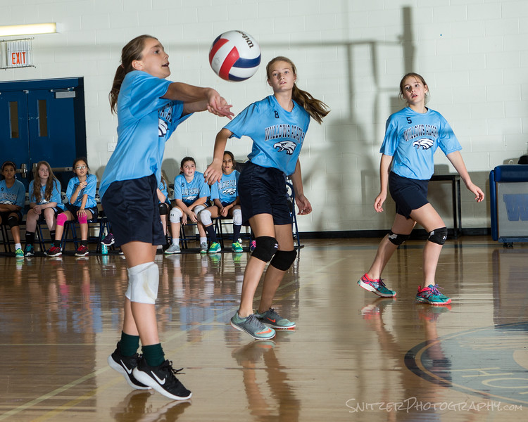 willows middle school volleyball 2017-813.jpg