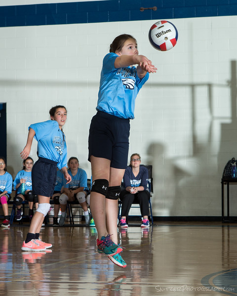 willows middle school volleyball 2017-822.jpg