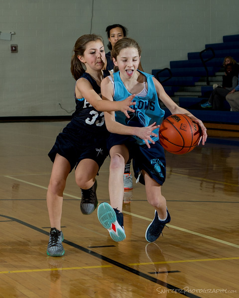 willows middle school hoop 1-27-16-1200.jpg