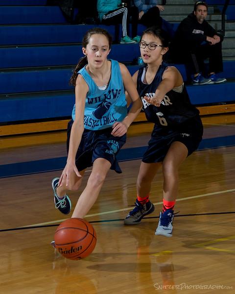 willows middle school hoop 1-27-16-872.jpg