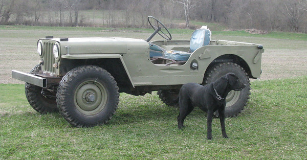 This is how the 49 titled Willys looked when I brought it home, except for the new bumper we already put one. Busted up boat seats, no floors, the body not attached to the frame, worn out engine and many other issues yet to be discovered.