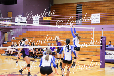 WilsonCentral_jvVolleyball025