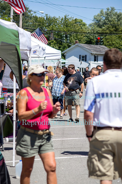 Wine and Art Festival August 3, 2013 in Wilson, NY.