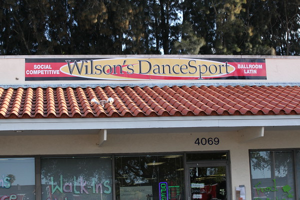 2017 Wilson's Dancesport Spring Mini Match