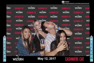 Wiltern Cashmerecat