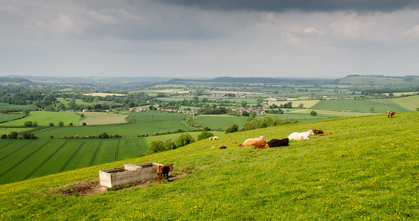 Vale of Wardour and Cranborne Chase landscape