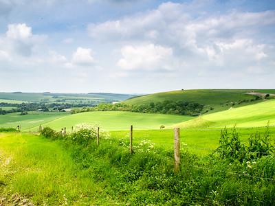 Cranborne Chase hills in Wiltshire