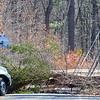 This tree struck a Chrysler van as it  fell across Mass. Avenue in Lunenburg. No injuries to driver. SENTINEL & ENTERPRISE/JOHN LOVE