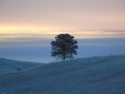 Frozen Sunrise, Wind Cave NP