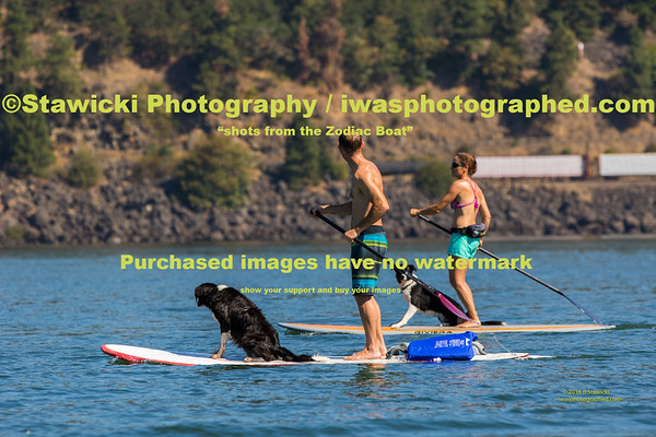 A Saturday Paddle 2016 08 20-7439