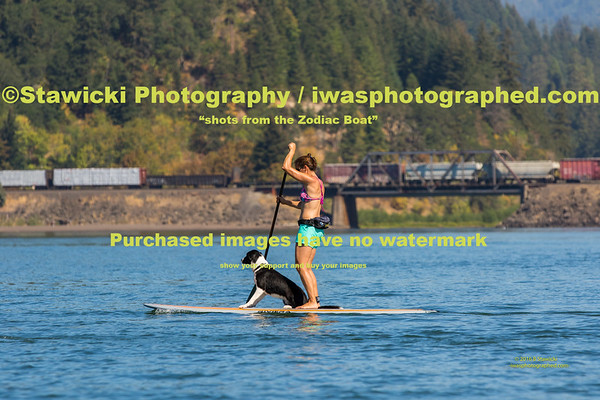 A Saturday Paddle 2016 08 20-7440