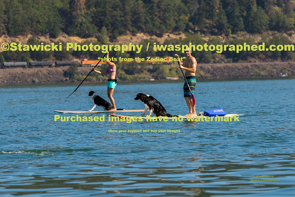 A Saturday Paddle 2016 08 20-7438