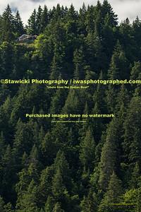 Swell City 6 4 2020-4219