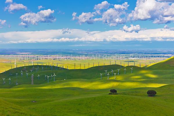 Altamont Windmills0201