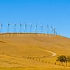 WindmillsDyerRd4430