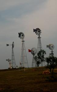 Windmill Gathering