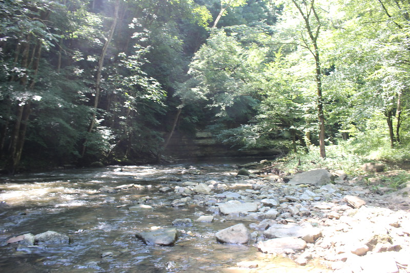 Looking upstream at Creek Crossing