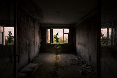 Window To Chernobyl