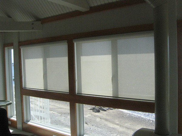 Solar Screen shades, lowered