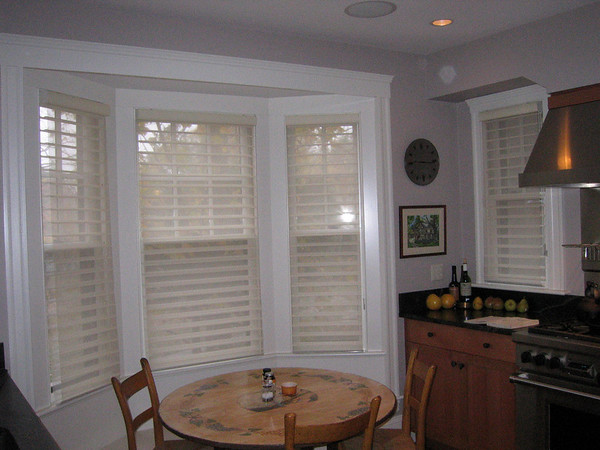 "3"" Alustra Silhouettes in Bay Window"
