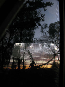Nightfall windscreen, Spring Forest 2009 22 x 18.5cm