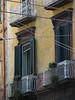 Naples 7
