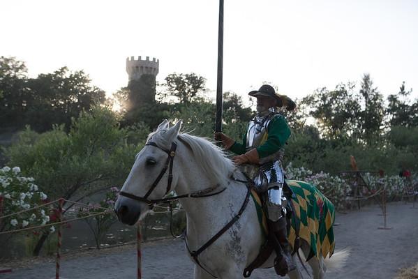Midsummer Medieval Festival 2014