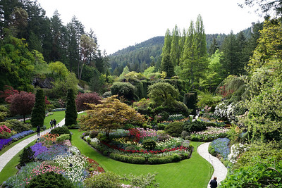 Wine Country Coastal Cruise May 3, 2014 - Victoria Port Of  Call - The  Butchart Gardens