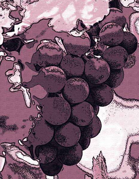 purple tone grape bunch