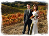 Wine country wedding in the fall vineyards