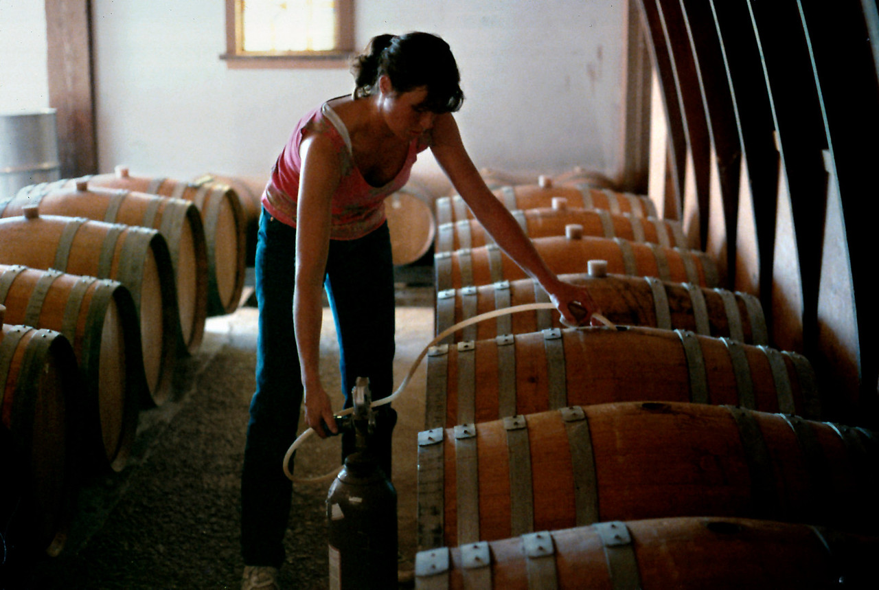 Sulfur dioxide gas is being used to sterilize French oak wine barrels, West Park Winery, Hudson Valley, New York state, c.1987.