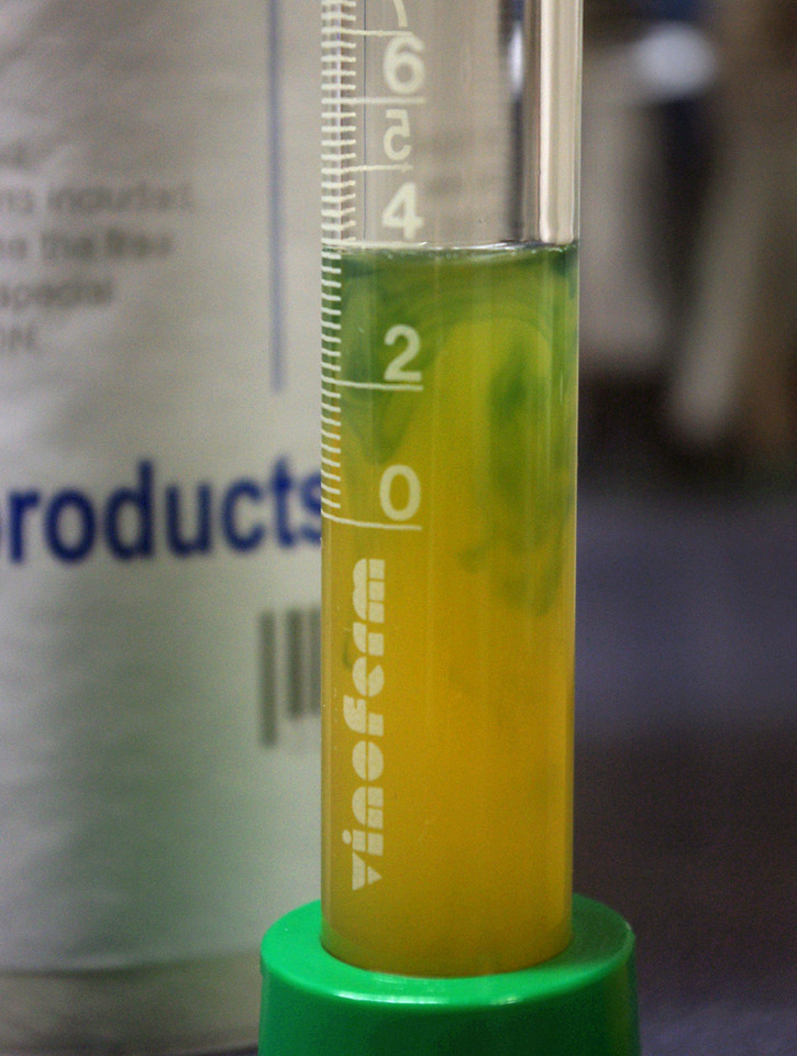Adding the Vinoferm acid testing reagent/indicator produces a greenish color as the acid in the juice is neutralized. <br /> <br /> The instructions say to shake the vial after each small addition of reagent, which makes the color fade as it is neutralized. When the color change persists for 10 seconds, the endpoint has been reached. At the endpoint, the millimeter markings on the test vial is equal to grams of acid per liter, as tartaric.<br /> <br /> In some countries winemakers may refer to total acidity expressed as sulfuric acid, rather than tartaric. When taking measurements and making adjustments it's important to know which acid is the point-of-reference for your numbers.