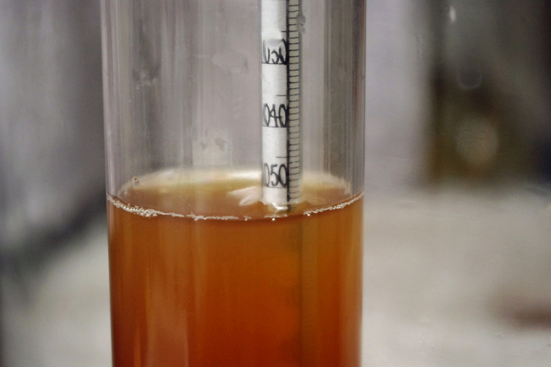 Hydrometer reading, apple cider. SG=1.054. The hydrometer reading tells me how much sugar is in the cider. <br /> <br /> If I didn't add any sugar, this specific gravity reading of 1.054 indicates there is enough sugar to make a dry wine with about 7.5% alcohol - not enough. The finished wine really needs to have 11 or 12 % alcohol, or it won't keep well unless refrigerated or some other kind of preservative is added.