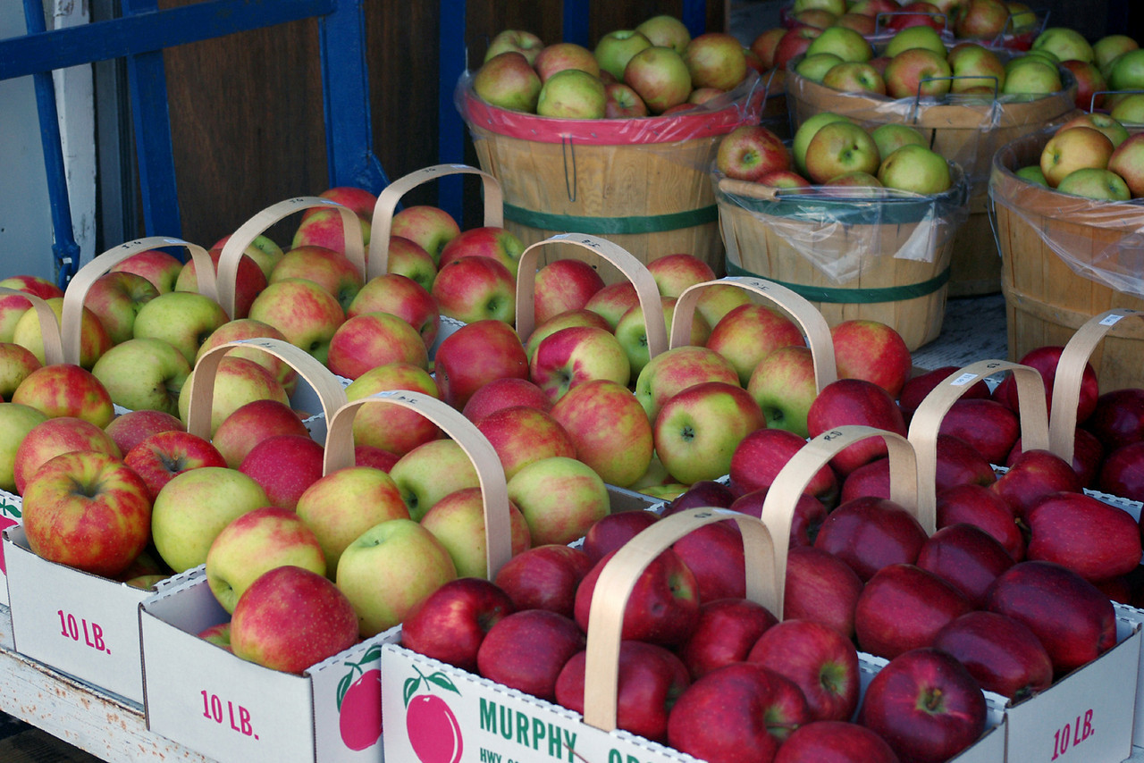When I asked what apple varieties were in the cider at Murphy, the woman behind the cash register was very evasive - some kind of trade secret, I guess. After further interrogation she finally admitted it was jonathan and golden delicious - pretty much the standard cider apples in the Marionville area.<br /> <br /> Nice balanced flavors, luscious apple aromas, and no preservatives - so it's good to go for wine making.