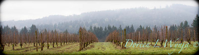 Arterberry Maresh Vineyards_111