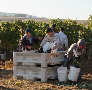 Marsh Harvest 2015_5048