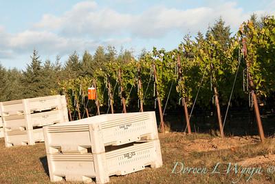Marsh Harvest 2015_5013