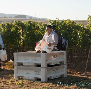 Marsh Harvest 2015_5047