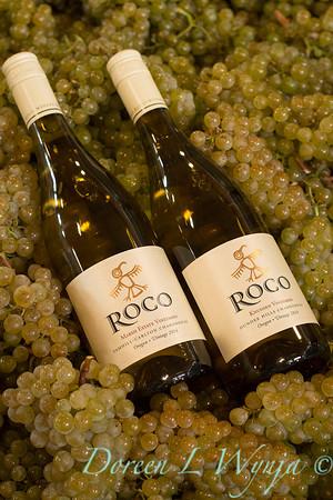 Roco wines_653