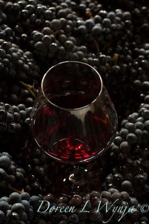 Roco wines_665