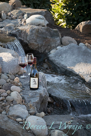 Bottle shots - water feature - Roco Winery_604