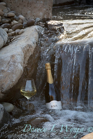Bottle shots - water feature - Roco Winery_619