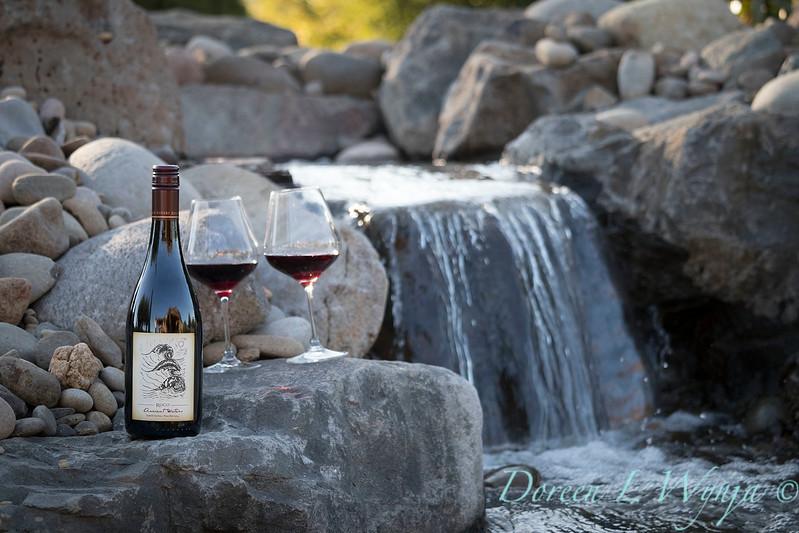 Bottle shots - water feature - Roco Winery_607