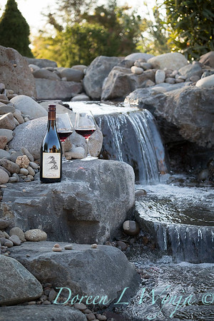Bottle shots - water feature - Roco Winery_609