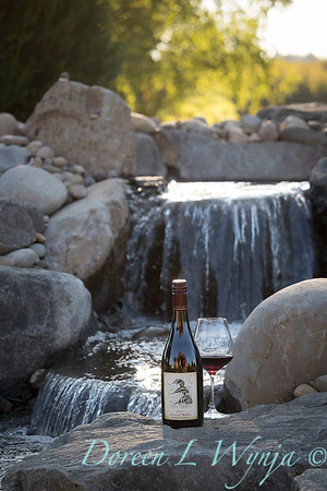 Bottle shots - water feature - Roco Winery_612