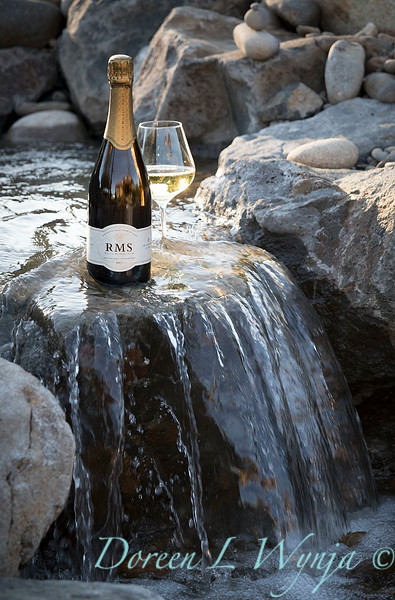 Bottle shots - water feature - Roco Winery_617