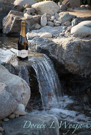 Bottle shots - water feature - Roco Winery_615