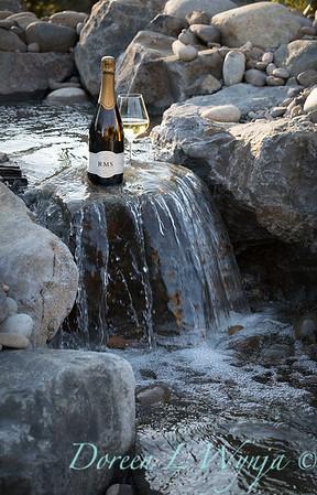 Bottle shots - water feature - Roco Winery_616